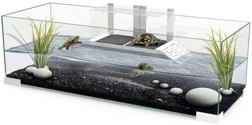 terrario para tortuga